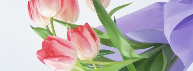 Скидки и подарки к Международному Женскому Дню